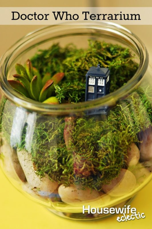 Doctor Who Terrarium 1