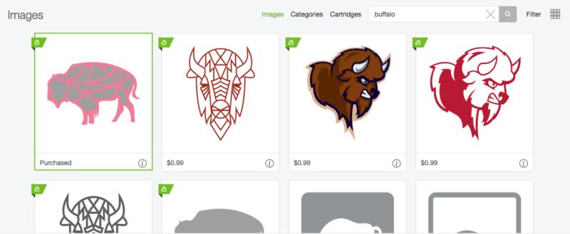 cricut design space - buffalo